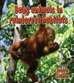 Baby Animals in Rainforest Habitats