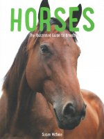 Horses: The Illustrated Guide to Breeds