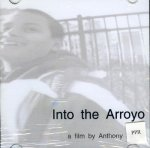 Into the Arroyo