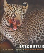 Predator: Life and Death in the African Bush