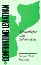 Confronting Leviathan: Mozambique Since Independence