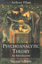 Psychoanalytic Theory: An Introduction