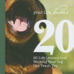 20 Life Lessons That Walking Your Dog Can Teach You
