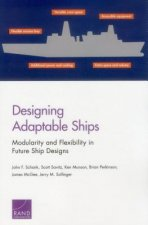 Designing Adaptable Ships: Modularity and Flexibility in Future Ship Designs