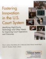 Fostering Innovation in the U.S. Court System: Identifying High-Priority Technology and Other Needs for Improving Court Operations and Outcomes