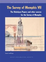 The Hekekyan Papers and Other Sources for the Survey of Memphis
