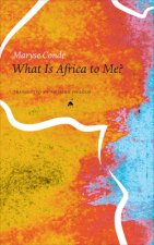 What Is Africa to Me?: Fragments of a True-To-Life Autobiography