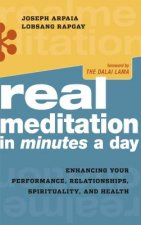 Real Meditation in Minutes a Day: Optimizing Your Performance, Relationships, Spirituality, and Health