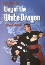 Pai Lum Tao: Way of the White Dragon