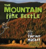 The Mountain Pine Beetle: Tiny But Mighty