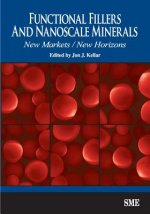 Functional Fillers and Nanoscale Minerals: New Markets/New Horizons