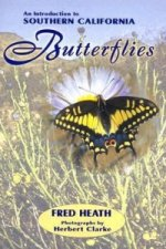 An Introduction to Southern California Butterflies