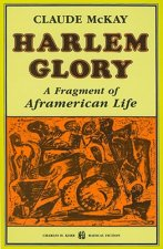 Harlem Glory: A Fragment of Aframerican Life