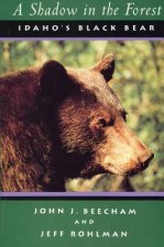 A Shadow in the Forest: Idaho's Black Bear