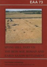 The Anglo-Saxon Cemetery at Spong Hill, Part 7: Iron Age, Roman and Early Saxon Settlement