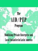 The Aid/Pep Program