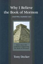 Why I Believe the Book of Mormon: And Why Anybody Can