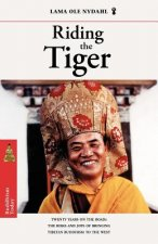 Riding the Tiger: Twenty Years on the Road: The Risks and Joys of Bringing Tibetan Buddhism to the West