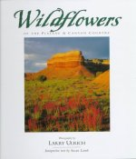 Wildflowers of the Plateau and Canyon Country