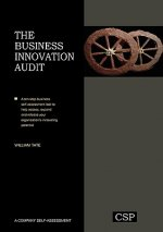 The Business Innovation Audit