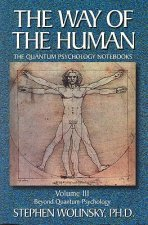 The Way of Human, Volume III: Beyond Quantum Psychology, the Quantum Psychology Notebooks