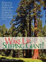 Wake Up Sleeping Giant