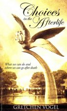 Choices in the Afterlife: What We Can Do & Where We Can Go After Death