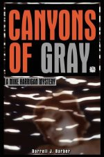 Canyons of Gray