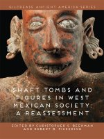 Shaft Tombs and Figures in West Mexican Society: A Reassessment
