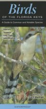 Birds of the Florida Keys: A Guide to Common and Notable Species