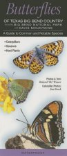 Butterflies of Texas Big Bend Country Incl. Big Bend National Park & Davis Mtns.: A Guide to Common & Notable Species