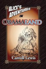 Alice's Adventures in Obamaland