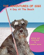 The Adventures of Sigi-A Day at the Beach