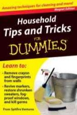 Household Tips and Tricks for Dummies: Amazing Techniques for Cleaning and More! [With Magnet(s)]