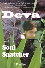Deva and the Soul Snatcher an Environmental Fantasy