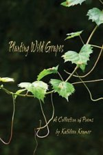 Planting Wild Grapes