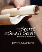 The Secret of the Small Scroll, a Book about Revelation