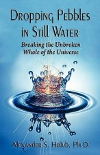 Dropping Pebbles in Still Water: Breaking the Unbroken Whole of the Universe