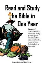 Read and Study the Bible in One Year