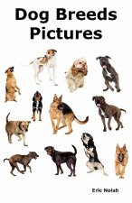 Dog Breeds Pictures: Over 100 Breeds Including Chihuahua, Pug, Bulldog, German Shepherd, Maltese, Beagle, Rottweiler, Dachshund, Golden Ret