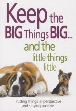 Keep the Big Things Big and the Little Things Little: Putting Things in Perspective and Staying Positive