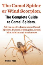 Camel Spider or Wind Scorpion, The Complete Guide to Camel Spiders.