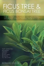 Ficus Tree and Ficus Bonsai Tree. The Complete Guide to Growing, Pruning and Caring for Ficus. Top Varieties