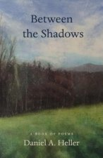 Between the Shadows: A Book of Poems