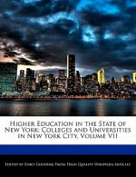 Higher Education in the State of New York: Colleges and Universities in New York City, Volume VII