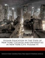 Higher Education in the State of New York: Colleges and Universities in New York City, Volume VI