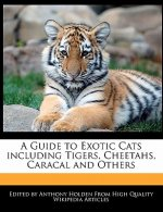 A Guide to Exotic Cats Including Tigers, Cheetahs, Caracal and Others