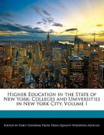 Higher Education in the State of New York: Colleges and Universities in New York City, Volume I
