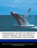 A Reference Guide to Whales: Sperm Whale, Killer Whale, Whale Watching and More