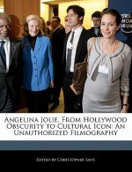 Angelina Jolie, from Hollywood Obscurity to Cultural Icon: An Unauthorized Filmography